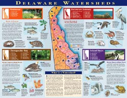 Delaware Watersheds Poster