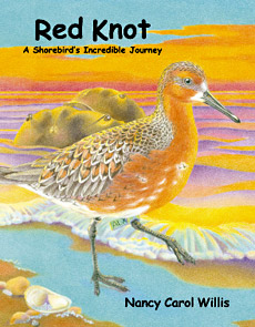 Red Knot Book Cover sample image
